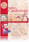 Runge: Netter's Cardiology, 2nd Edition
