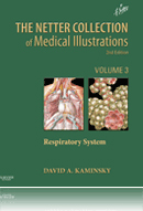 Kaminsky: The Netter Collection of Medical Illustrations Respiratory System 2nd Edition