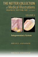The Netter Collection of Medical Illustrations Integumentary System 2nd Edition