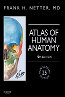 Netter: Netter's Atlas of Human Anatomy 6th Edition