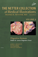 The Netter Collection of Medical Illustrations Digestive System Part II Lower Digestive Tract